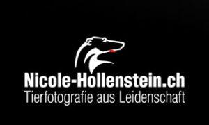 Nicole Hollenstein Tierfotografie